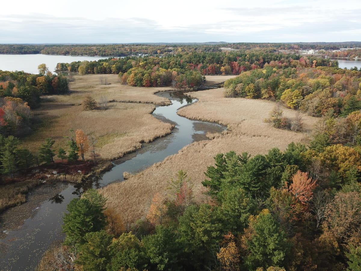 Deer Point Island in Lake of the Isles, adjacent to TILT's Barnett Marsh and Wellesley Island Preserve