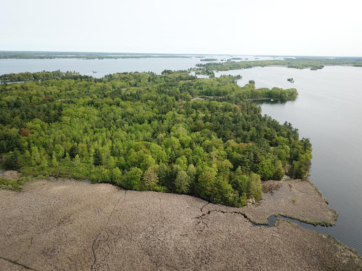 Number Nine Island, near TILT's Crooked Creek Preserve