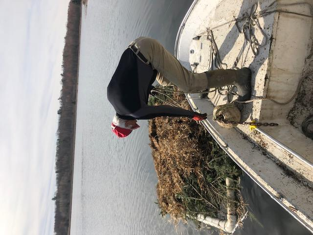 Tom Tinney sets up a loon nesting platform on Grindstone