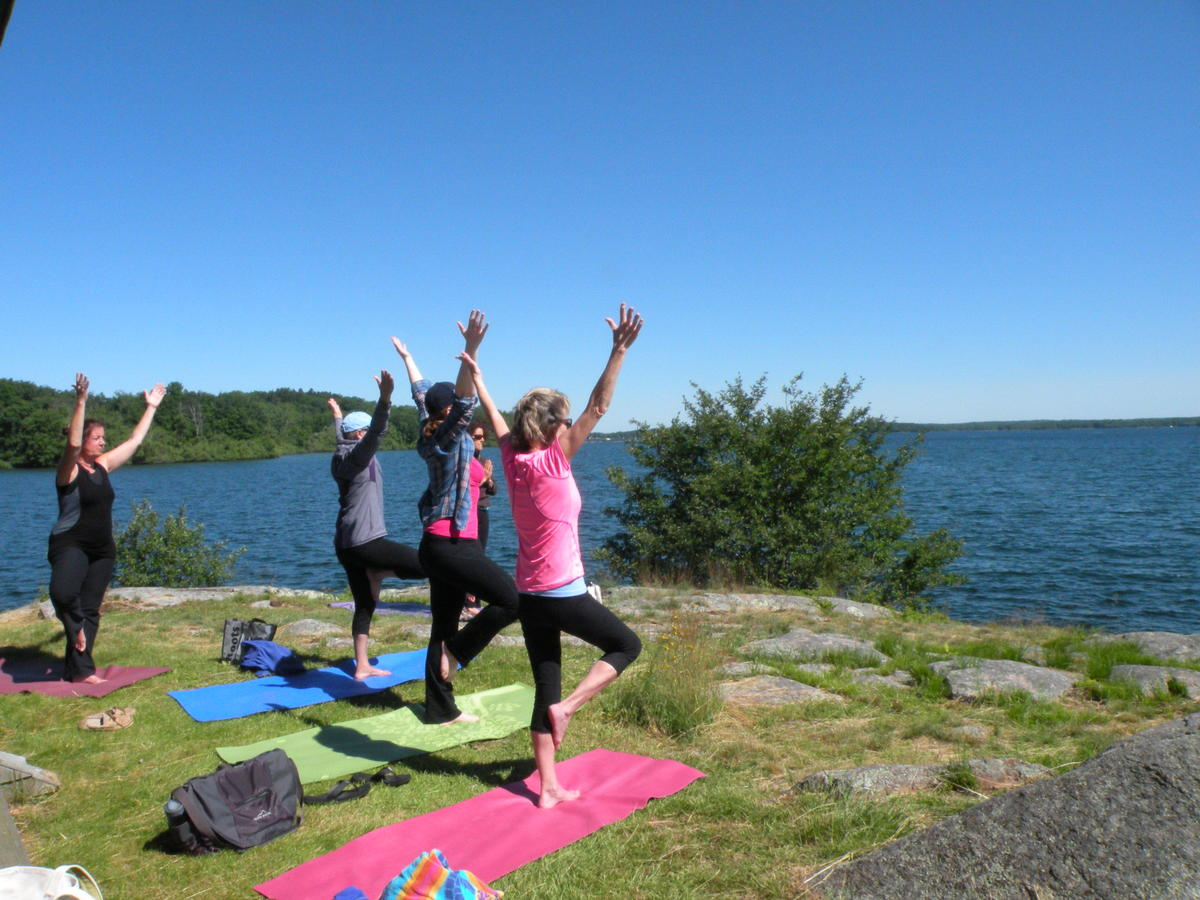 YogaTrek at Picnic Point