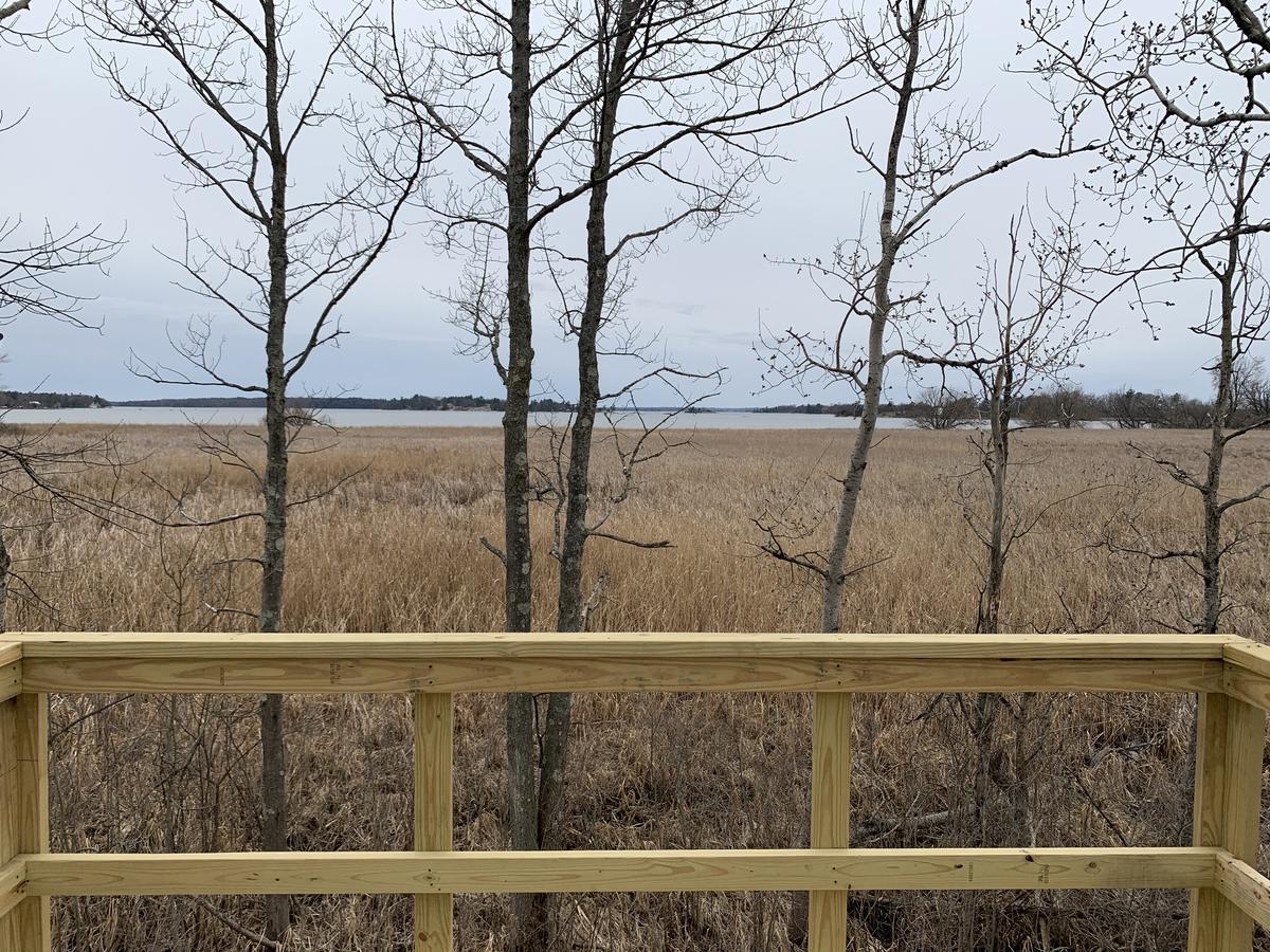 Chippewa Bay Preserve Improvements