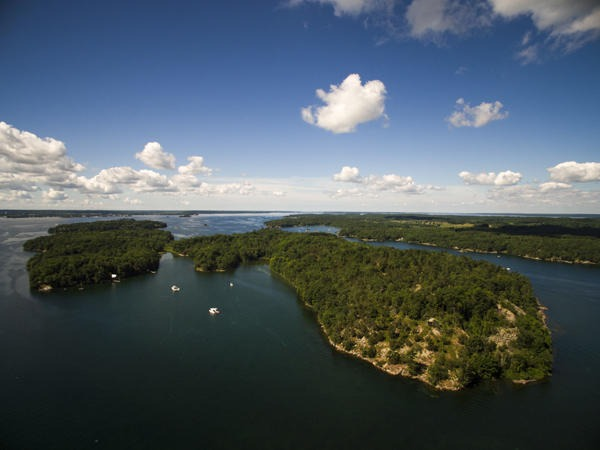 Picton Island. Photo by Feather in Flight