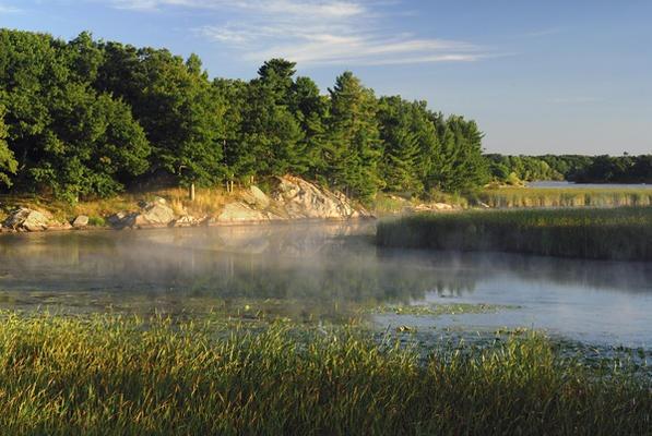 Crooked Creek Preserve | Thousand Islands Land Trust